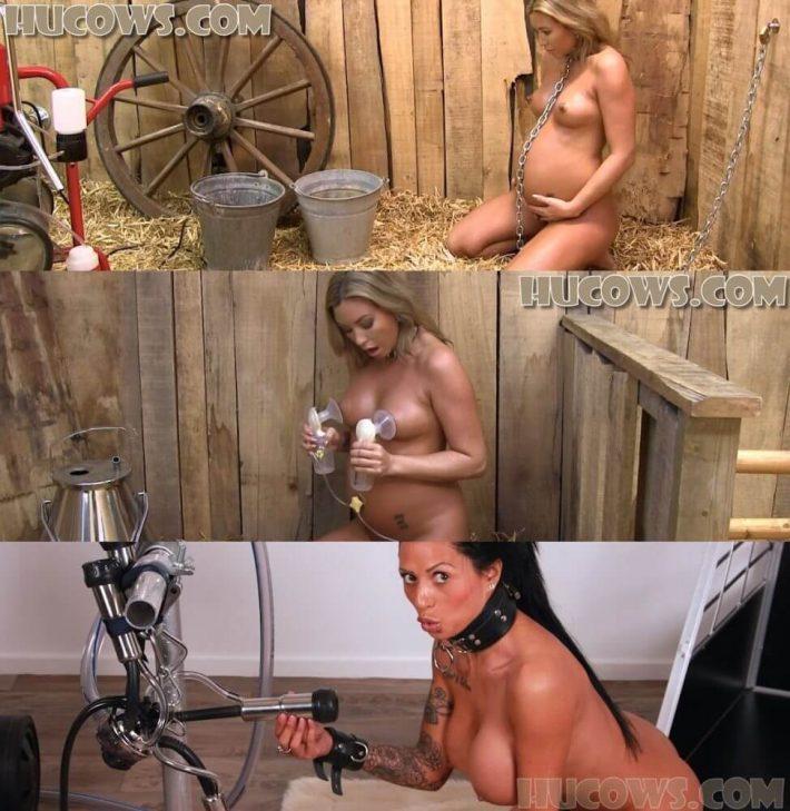 Lactation bondage forced milking hentai