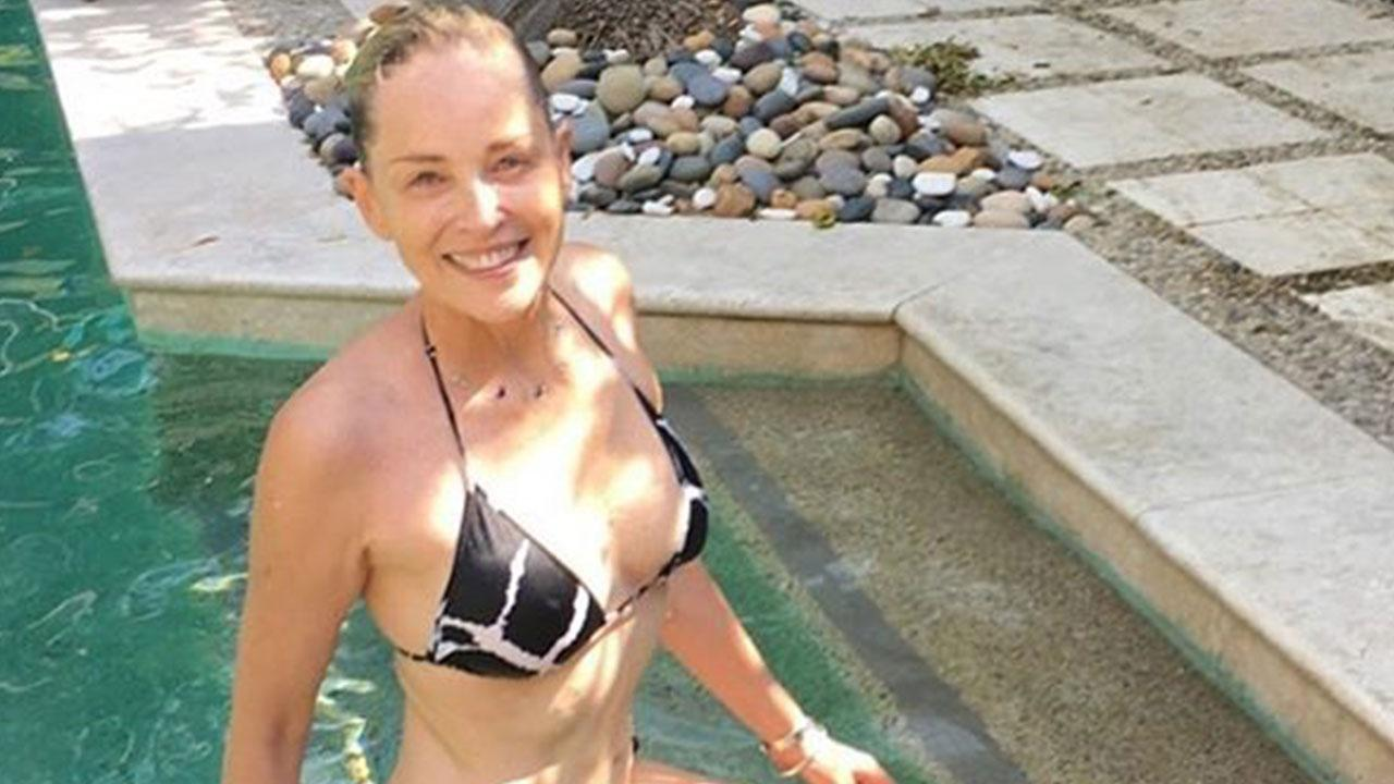 Breast sharon stone nude