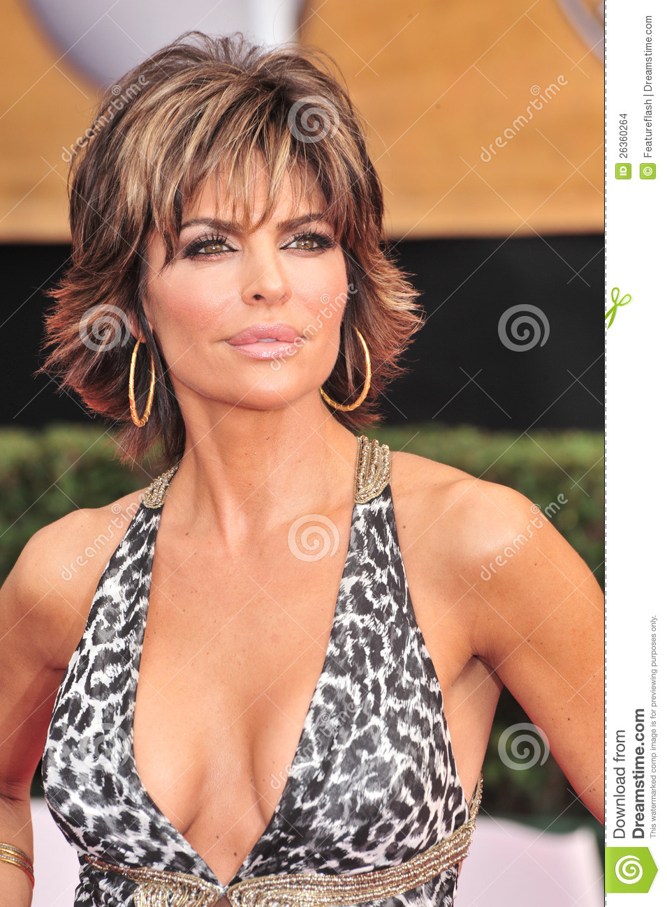 Lisa rinna having anal sex