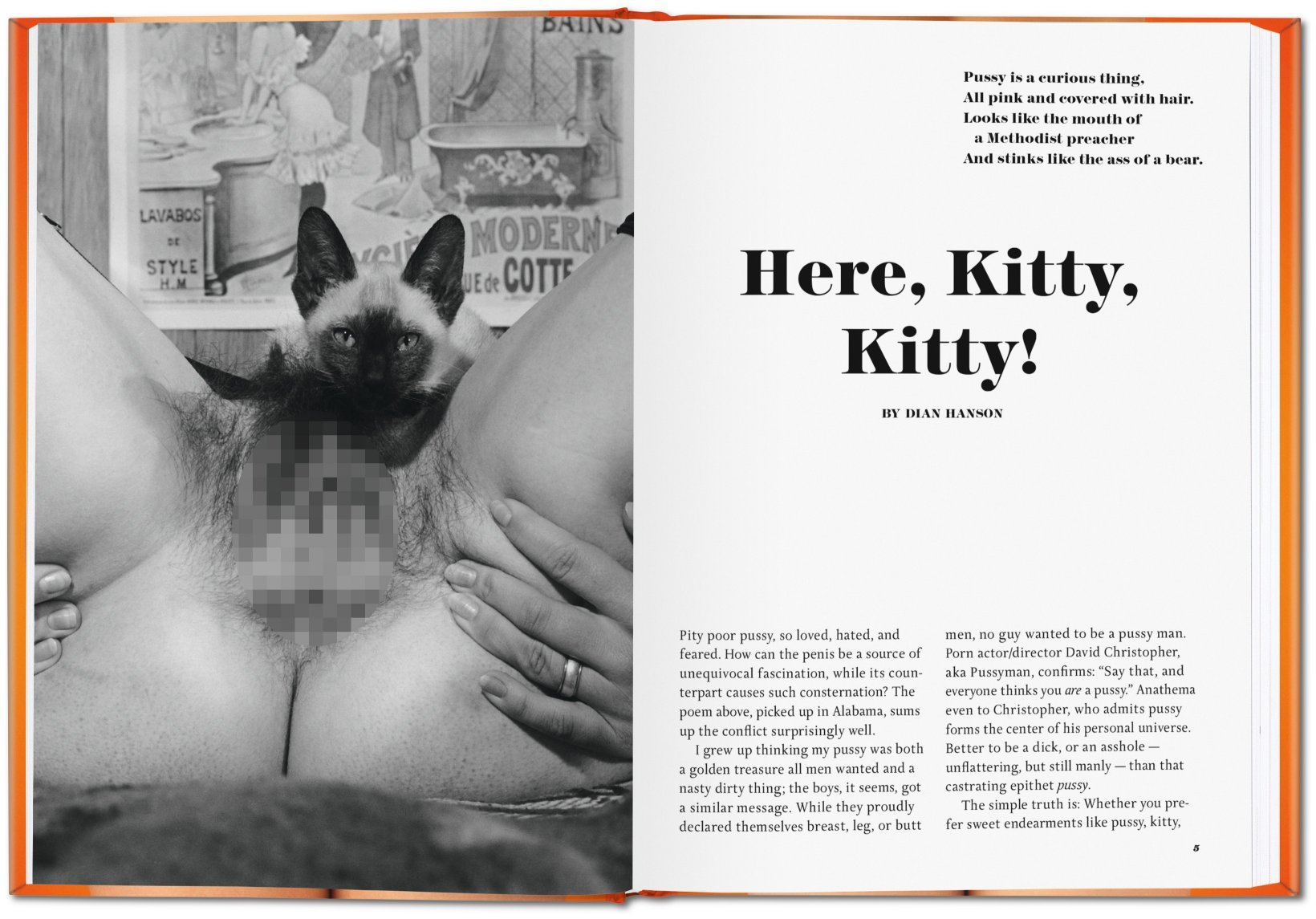 The book of pussy taschen