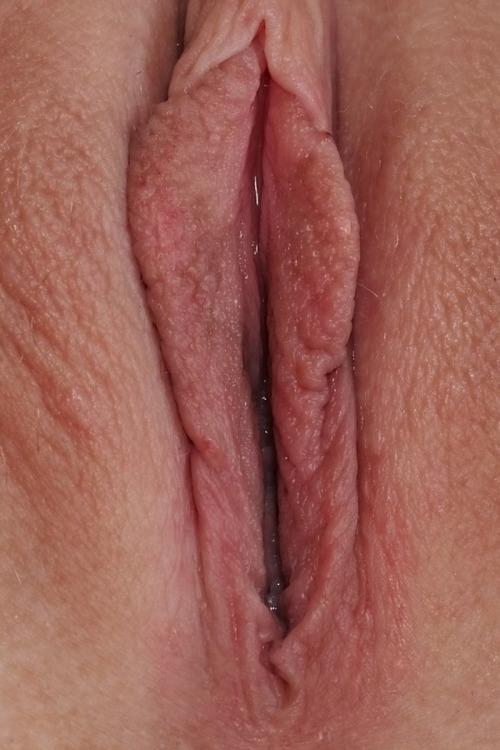 Free porn pink pics wet pussy