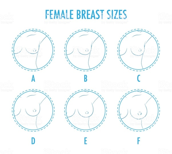 Breast e cup sizes