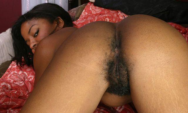 African hairy ass pussies