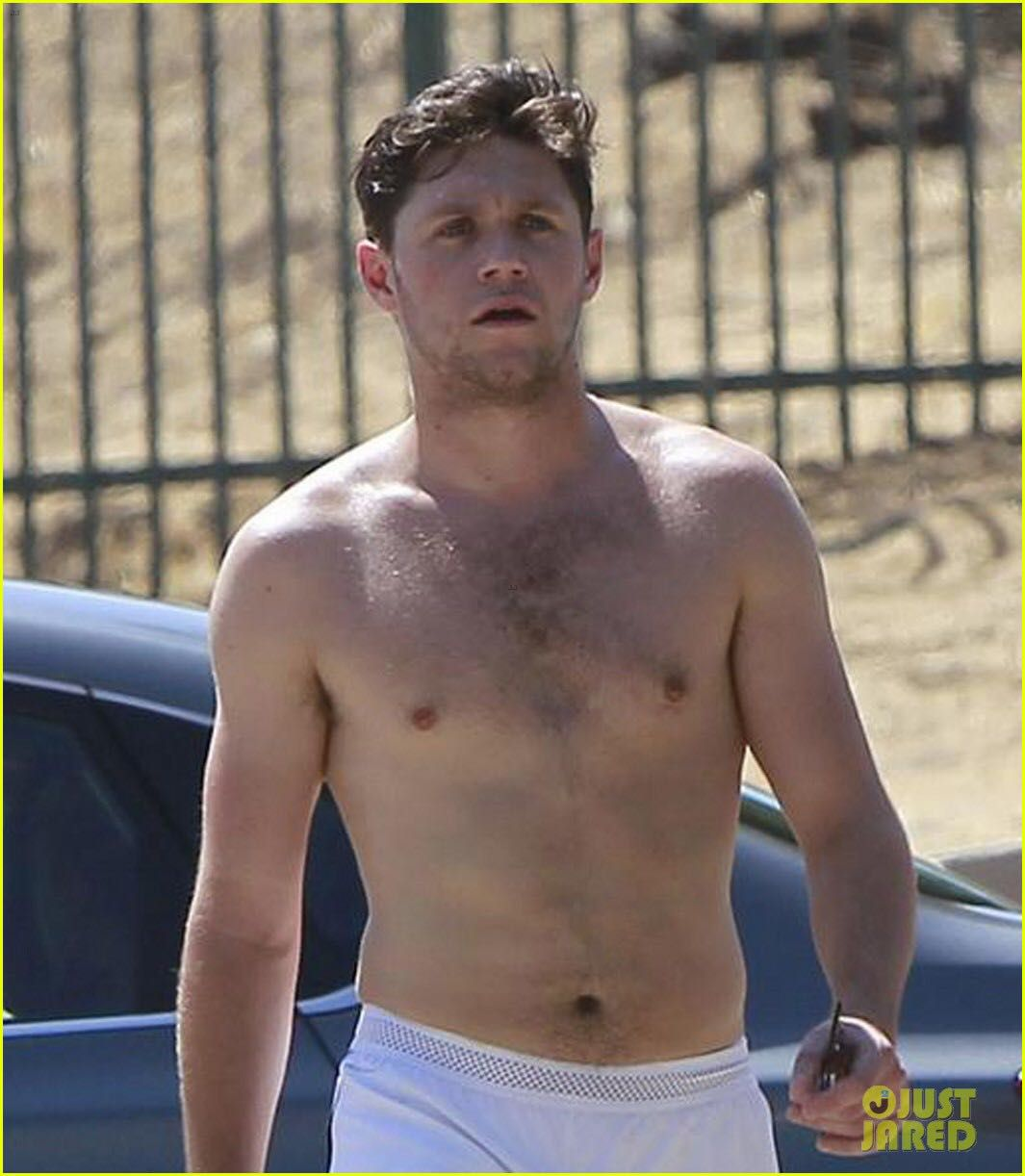 One direction niall horan nude